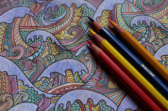 Photo of adult coloring page by Maxime De Ruyck