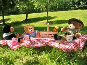 Photograph of teddy bears on a picnic