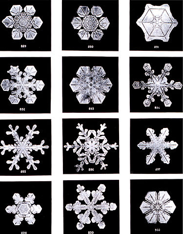photo of snowflakes
