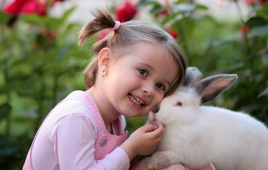Photograph of a girl and a rabbit