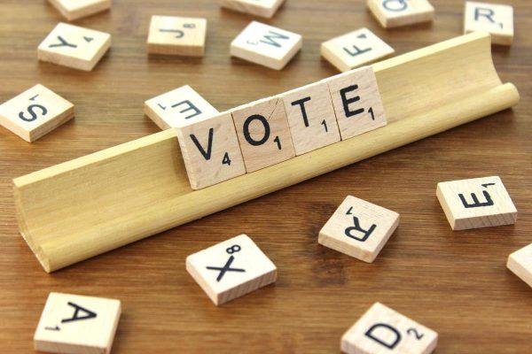 November 3 General Election Guide