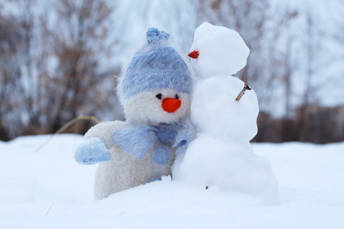 Photo of snowmen