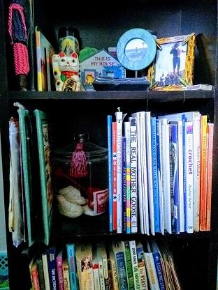 stephanie's bookshelves