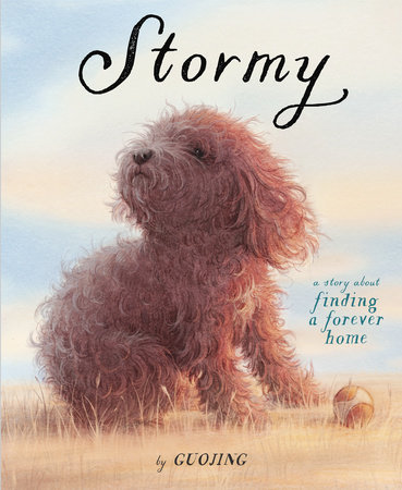 Stormy book cover