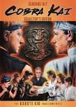 Cobra Kai DVD cover