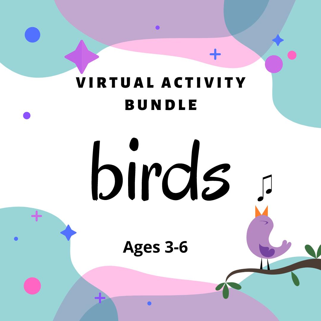 Virtual Activity Bundle: Birds