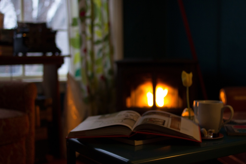 book-warm-cottage-fire-cozy-fireplace-1064-pxhere.com