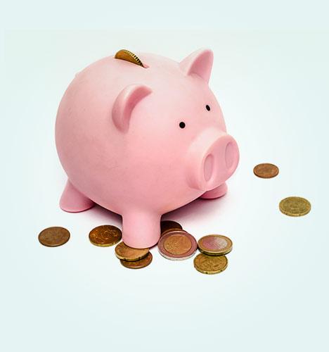 Personal Budgeting Basics