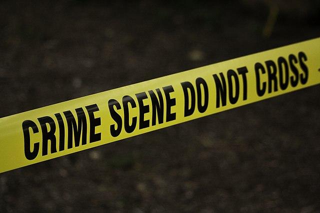 Literary Links: True Crime Reads