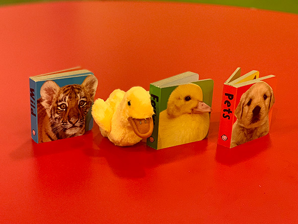 Baby Animals Chunky 3 Board Book Set & Duckling Finger Puppet