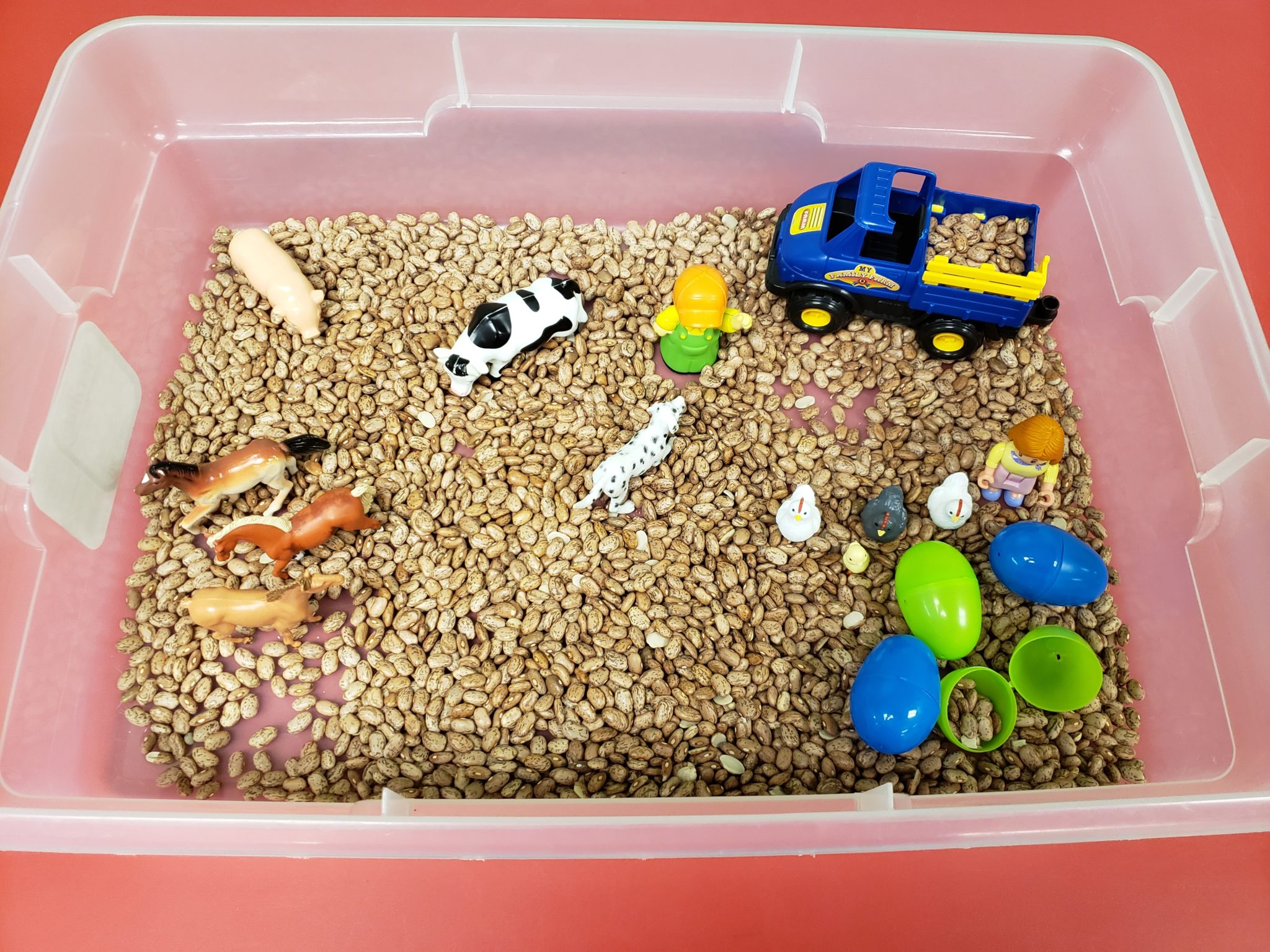 farm sensory bin